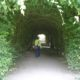 living-tunnel-1559027